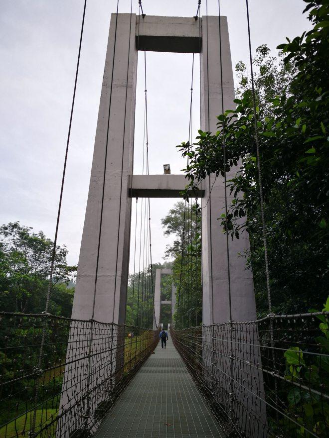 Photo Op - Hanging bridge